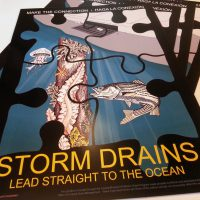 Stormwater NPS Pollution Poster