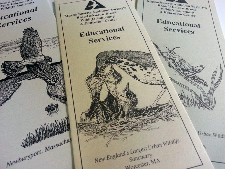 MassAudubon brochures